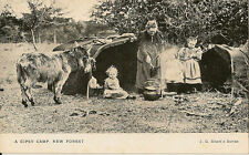 GIPSIES : A Gipsy Camp ,New Forest -SHORT'S series