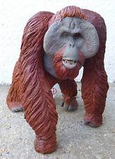 BORNEO ORANGUTAN  detailed plastic mammal model  toy by Safari Ltd 13 x 13cm