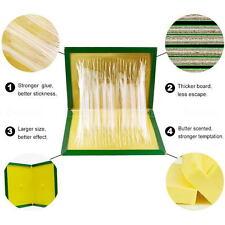 Rat Trape Snare Mouse Glue Snare Traps Mice Rodent Sticky Boards Tool 5PCS / Set
