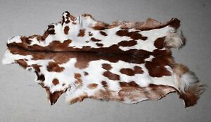 "New Goat hide Rug Hair on Area Rug Size 40""x24"" Animal Leather Goat Skin U-3902"
