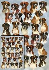 Boxer Dog Gift Wrapping Paper By Starprint