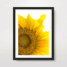 YELLOW SUNFLOWER FLOWERS FLORAL PHOTOGRAPHY ART PRINT Decor Wall Picture