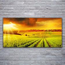 Acrylglasbilder Wandbilder aus Plexiglas® 120x60 Leuchtturm Landschaft