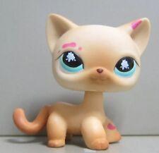 Littlest Pet Shop LPS 816 Short Hair Cat Kitty Messiest Cream Tan USASeller Rare
