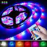 3528 LED Strip light RGB Waterproof SMD 5M US EU Power Full Kit 24/44 Key Remote
