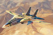 "HOBBYBOSS® 81771 F-14A Tomcat IRIAF ""Persian Cat"" in 1:48"