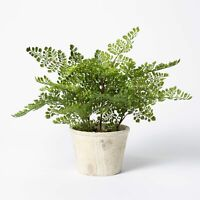 "NEW 13""x13"" Artificial Fern Plant in Pot Threshold designed by Studio McGee"