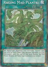YU-GI-OH: RAGING MAD PLANTS - SHATTER FOIL RARE - BP03-EN165 - 1st EDITION