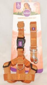 HALO - Orange & Black - Heavy Duty - Harness & Lead Leash 2 pc SET sz Large *NEW