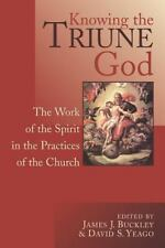 Knowing the Triune God: The Work of the Spirit in the Practices of the Church, ,