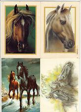 Lot 4 cartes postales CHEVAL CHEVAUX EQUITATION DESSINS