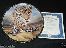 First Light by Charles Frace on Soul of the Wild Collection COA 4387 Big Cats