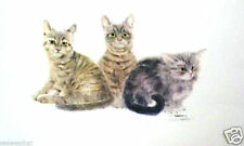 Three Little Kittens by Frank Gee