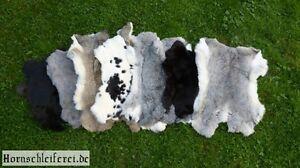 Kaninchenfell Pelz Hasen Fell Kanin Tierfell versch. Farben aus deutscher Herst.