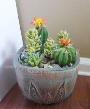 6 Artificial Succulents Yellow hyacinth Grass Orange Flowering Cactus Plants