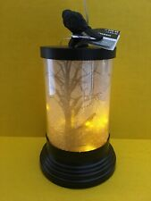 "Halloween Black Bird Crow LED Lantern Ashland 11"" x 6"" New"