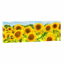 Sonnenblumen- Bild Blumen Keilrahmen Leinwand Poster Wandbild 150 cm*50 cm 508