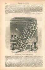Juchoir Poulailler Poules Coq Cochinchinois Ferme du Brie GRAVURE OLD PRINT 1854