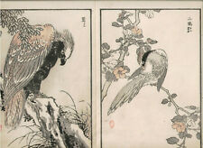 1881 double woodblock prints, Bairei, Birds Flowers, plate 6, Vol 1