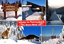 Winter im Nationalpark Bayer. Wald ; Ansichtskarte , gelaufen