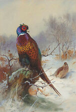 Beautiful Oil painting nice birds in winter snow landscape free shipping cost