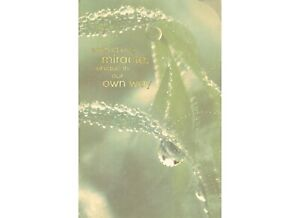 AG Sympathy Card: Comfort In the Special Thoughts of the One Who Meant So Much