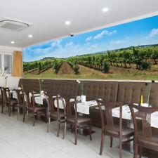 Tentures murales et tapis bleu pour la décoration de la cuisine