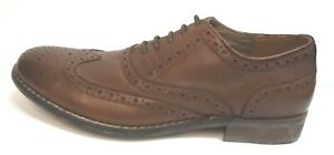 Steve Madden Size 8.5 Wing Tip  Oxfords Brown Leather New Mens Shoes