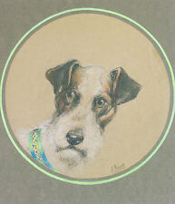 Dessin Original H. Brunet Chien Fox-terrier