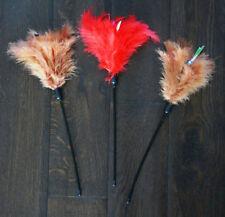 Jouets en plume pour chat