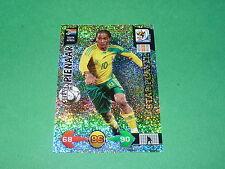 PIENAAR AFRIQUE SUD PANINI FOOTBALL CARD FIFA WORLD CUP 2010  ADRENALYN XL