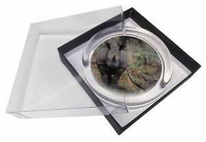 Rhinocerous Rhino Glass Paperweight in Gift Box Christmas Present, ARH-1PW