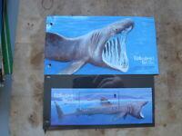 2005 Guernsey Mint Stamps presentation pack - Endangered Species -Basking Shark