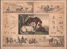 1860 Lithographie Le cheval course hippique promenade Boulogne équitation