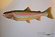 """Great fish Pictures RAINBOW TROUT FRAMED  18""""x12"""""""