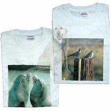 Original One of A kind Printed Photo T-shirts Dove & Sea Lion
