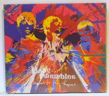 BABYSHAMBLES - SEQUEL TO THE PREQUEL - CD Sealed