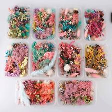 1 Box getrocknete Blumen DIY basteln Trockenblumen Frühling Sommer #3 #0294