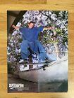 Adam McNatt Dana Point 1993 Skateboard Poster Powell Peralta Vans
