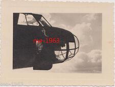 original  Foto  Geschwaderwappen  Schlange  LW Luftwaffe