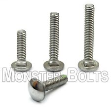 1/4-20 Stainless Steel Carriage Bolts, Square Neck, A2 / 18-8, aka Shaker Screen