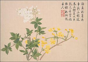Chinese Art: Flower Paintings: Flower No. 6 by Qian Weicheng - Fine Art Print