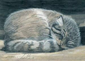 ACEO original pastel drawing  manul cat pallas cat by Anna Hoff