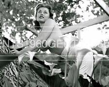 BUSTY BIG BREASTS NUDE DONALDA JORDAN 1950s 8X10 PHOTO FROM ORIGINAL NEG-2L
