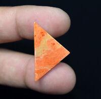 5.50 Cts Natural American Orange Sponge Coral Gemstone 30*18*2mm Fancy Cabochon