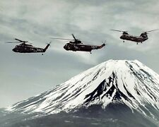 "Helicopter Combat Support Squadron HC-7 Sea Devils 8""x 10"" Vietnam War Photo 255"