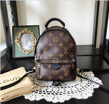 Louis Vuitton Brown Leather Palm Springs Mini Backpack