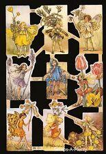 Mamelok English Scrap Die Cut - Flower Fairies (C. M. Barker) 1958 Out Of Print