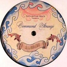Command Strange - Sunrise / When The Morning Comes - RARE DNB VINYL - AB001