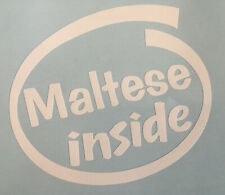MALTESE INSIDE DOG ON BOARD CAR WINDOW STICKER DECAL IN WHITE ALL COLOURS